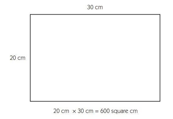 đo diện tích đơn vị đo lường hệ mét 3